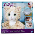 Hasbro (Хасбро) Hasbro (Хасбро) FurRealFrends. Покорми Котенка E0418EU4
